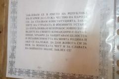 lz (11)